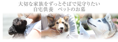 �ȥåץ����_�ѹ�_2011.11.30
